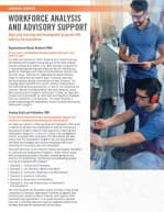 Learning Services Workforce Analysis and Advisory Support